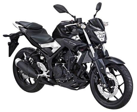 Yamaha-MT-25-Black-Strike