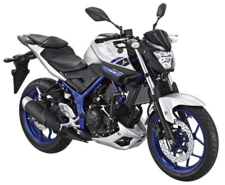 Yamaha-MT-25-Silver-Blue